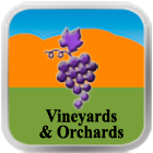 Vineyards & Orchards